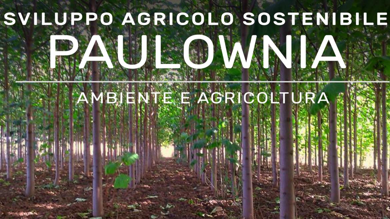 24 OTTOBRE: SVILUPPO AGRICOLO SOSTENIBILE CON LA PAULOWNIA