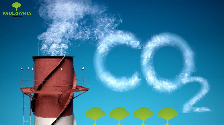 LA TUA AZIENDA COMPENSA LA CO2 EMESSA?