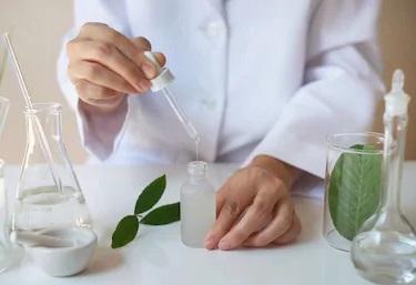 Proprietà medicinali della Paulownia