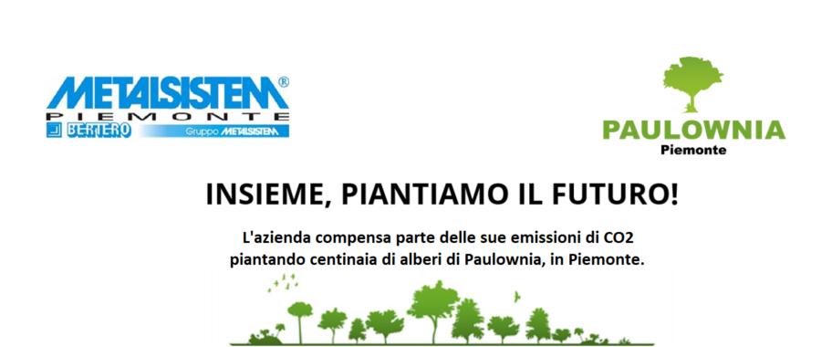 Metalsistem Piemonte compensa la CO2 piantando centinaia di alberi di Paulownia