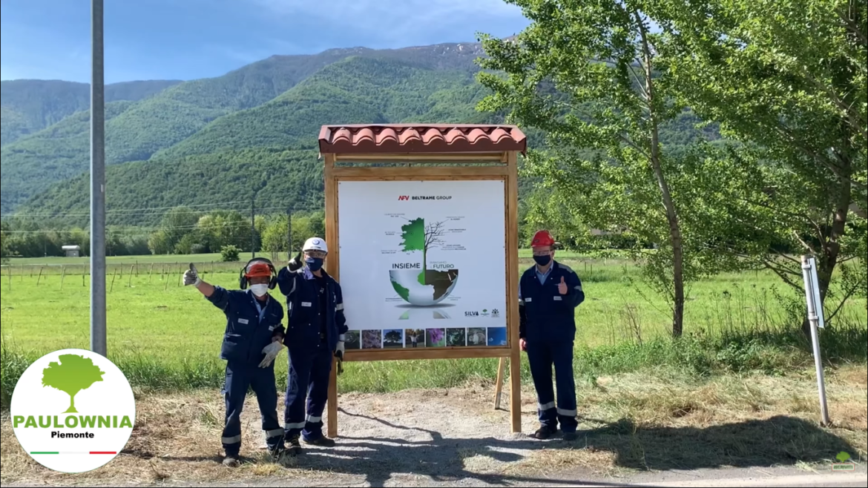 Paulownia Piemonte con AFV Beltrame Group